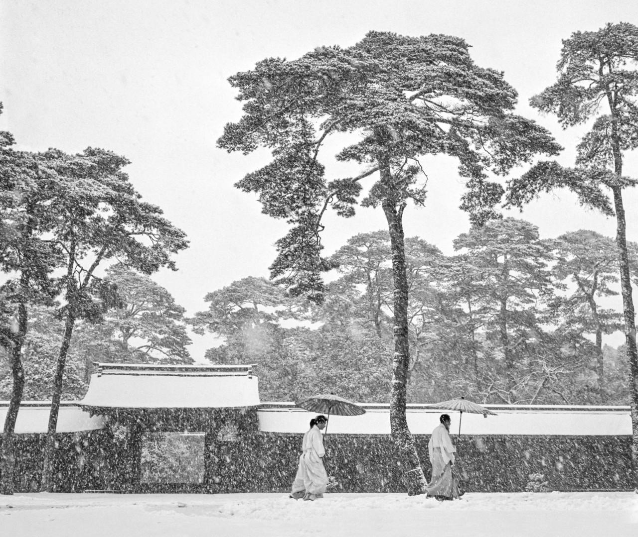 Werner Bischof Courtyard of the Meiji shrine. Tokyo. Japan. 1951. © Werner Bischof | Magnum Photos